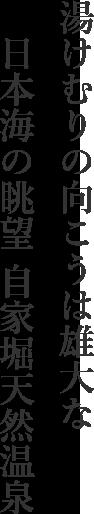 湯けむりの向こうは雄大な  日本海の眺望 自家堀天然温泉